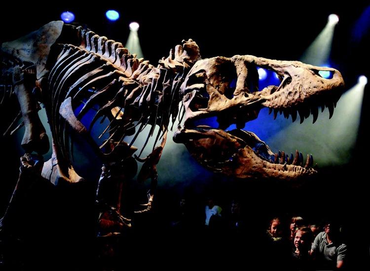 L'impression 3D et les scanners 3D au service des musées et de l'archéologie
